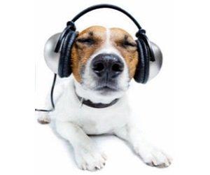Hörspiele kostenlos