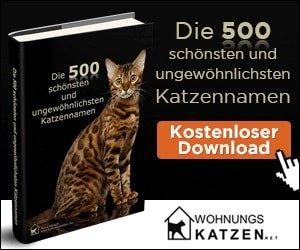 E-Book Katzennamen