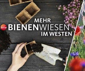 WDR 2 Samentütchen