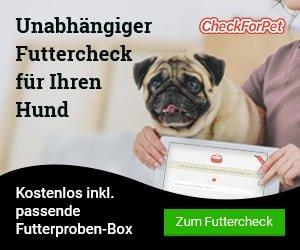 CheckForPet