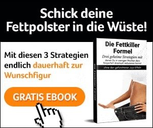 Gratis eBook Fettkiller