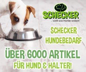 Schecker Katalog