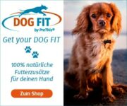 Gratis eBook von DOG FIT
